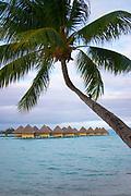 Overwater Bungalows, Bora Bora, Society Islands, South Pacific