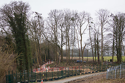 Wendover, UK. 18th March, 2021. HS2 works to fell woodland alongside Small Dean Lane. Considerable preparatory work of this type is currently taking place between Great Missenden and Wendover to the north of the Chiltern tunnel section of the £106bn HS2 high-speed rail link.