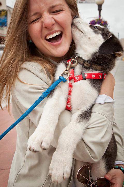 Melissa McKeithen receives kisses from a husky puppy during Golden Days, Fairbanks, Alaska