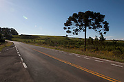 Cambara do Sul_RS, Brasil.<br /> <br /> Rodovia em Cambara do Sul no Rio Grande do Sul.<br /> <br /> The highway in Cambara do Sul in Rio Grande do Sul.<br /> <br /> Foto: MARCUS DESIMONI / NITRO