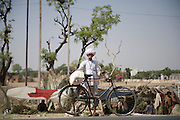 Wood cutter in front of slum - Ajmer, India