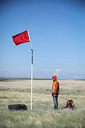 SHOT 5/9/20 8:49:39 AM - Various pointing breeds compete in the Vizsla Club of Colorado Licensed Hunt Test Premium at the Rocky Mountain Sporting Dog Club Grounds in Keenesburg, Co. (Photo by Marc Piscotty / © 2020)