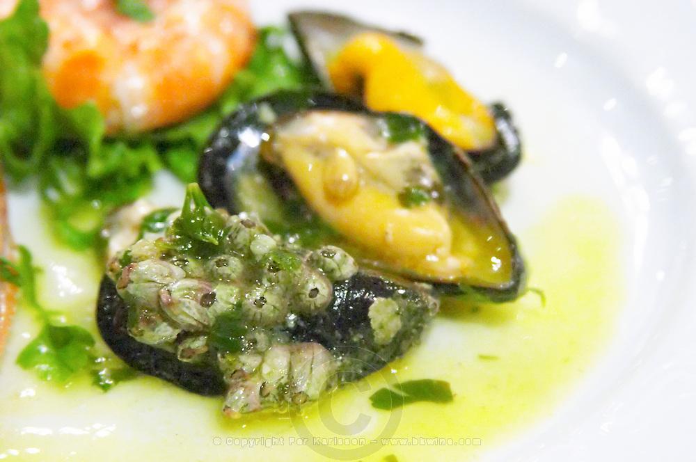 Mussels. Restaurant Berdema Ton Gefseon. Drama, Macedonia, Greece