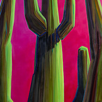 SOLD<br /> The towering saguaros of the Sonoran take on many different moods depending upon the light. This glowing pink sunset is a luscious backdrop for this majestic cactus.  30 x 60, oil on canvas.