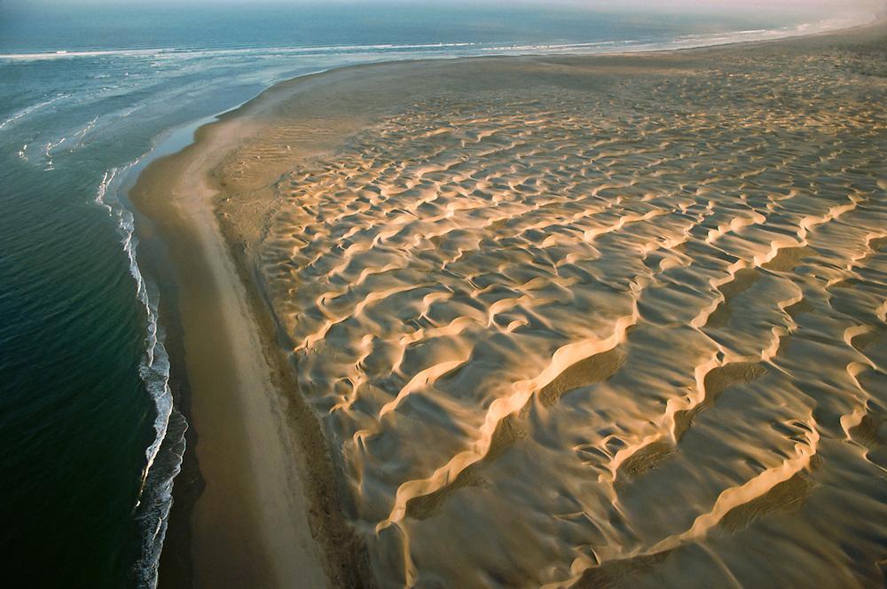 The dune-covered shoreline of Baja California.