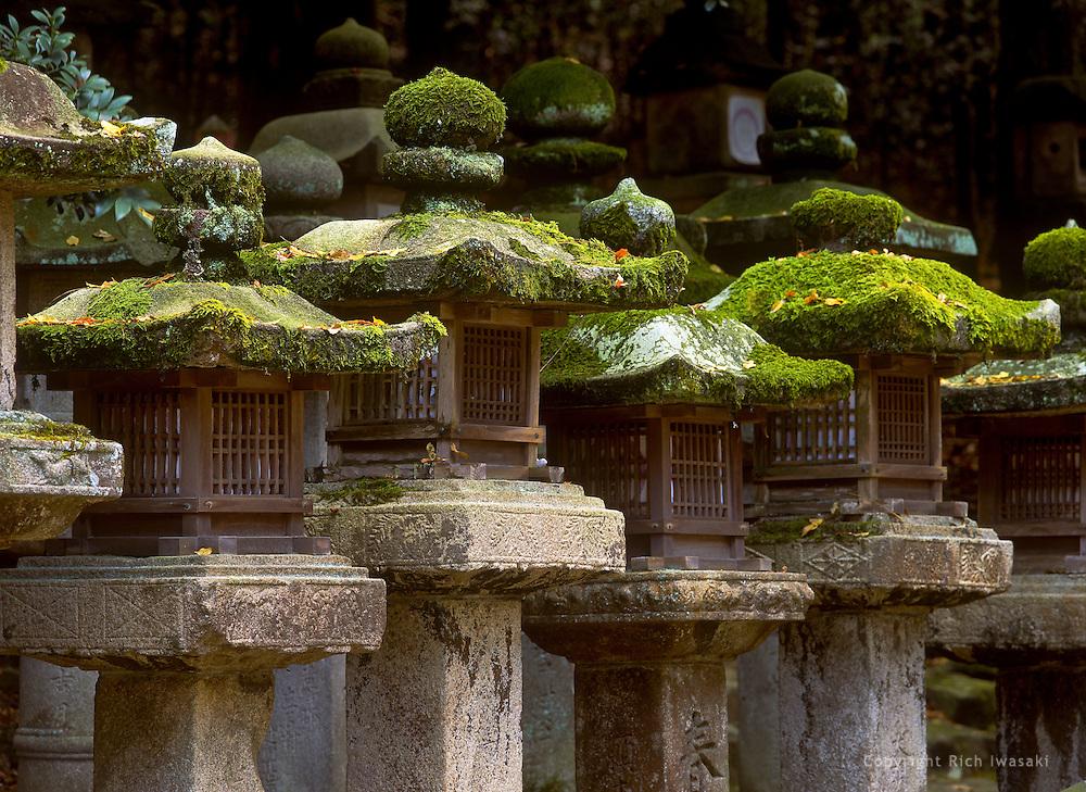 View of moss-covered stone lanterns at Kasuga-jinja (shrine), Nara, Nara Prefecture, japan