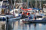 seal  harbor Friday Harbor, San Juan Island, Washington State