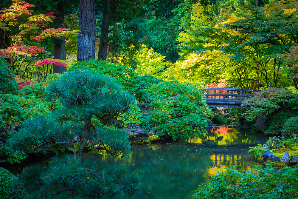 """The Portland Japanese Garden is a traditional Japanese garden occupying 12 acres, located within Washington Park in the West Hills of Portland, Oregon, United States. It is operated as a private non-profit organization, which leased the site from the city in the early 1960s. Stephen D. Bloom has been the chief executive officer of the Portland Japanese Garden since 2005. <br /> <br /> The Garden Pavilion was built in 1980 in Japanese style by local builders: it has a tiled roof, wooden verandas, and Shōji sliding doors. It is the center of several Japanese cultural festivals, art exhibitions, and other events. The west veranda faces the Flat Garden, and the east veranda overlooks downtown Portland and Mount Hood, which resembles Mount Fuji. Dozens of stone lanterns are present throughout the garden. The lower entrance features a 100-year-old temple gate, a 1976 gift of the Japanese Ancestral Society of Portland Oregon.<br /> <br /> As a Japanese garden, the desired effect is to realize a sense of peace, harmony, and tranquility and to experience the feeling of being a part of nature. Three of the essential elements used to create the garden are stone, the """"bones"""" of the landscape; water, the life-giving force; and plants, the tapestry of the four seasons. Japanese garden designers feel that good stone composition is one of the most important elements in creating a well-designed garden. Secondary elements include pagodas, stone lanterns, water basins, arbors, and bridges. Japanese gardens are asymmetrical in design and reflect nature in idealized form. Traditionally, human scale is maintained throughout so that one always feels part of the environment and not overpowered by it."""