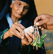 Elderly lady preparing packages of paan containing Betel nut, Lucknow, Uttar Pradesh, India