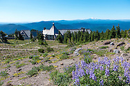 Timberline Lodge and Mt. Jefferson in the distance as seen from The Pacific Crest Trail at Timberline Lodge on Mt. Hood, Oregon