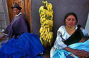 An Otavalan woman breastfeeds her baby boy whilst selling bananas at the Saturday market, Ecuador.