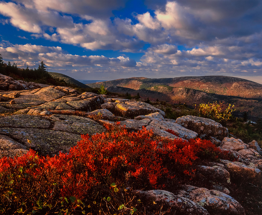 View to Sargent Mountain from Cadillac Mountain, bedrock, red blueberry bush in fall, Mount Desert Island