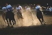 Breeders' Cup Classic (Race 11) (Dirt) <br /> November 3, 2018: Accelerate #14, ridden by Joel Rosario, wins the Breeders' Cup Classic on Breeders' Cup World Championship Saturday at Churchill Downs on November 3, 2018 in Louisville, Kentucky.