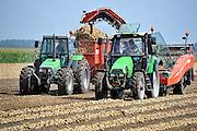 Nederland, Urk, 26-8-2011Uien worden geoogst op een akker in de noordoostpolder.Trekkers rijden naast elkaar om het landbouwproduct mechanisch binnen te halen.Foto: Flip Franssen/Hollandse Hoogte