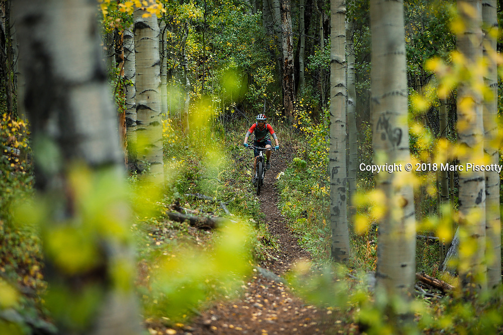 SHOT 9/2/18 2:55:41 PM - Vesta Lingvyte of Denver, Co. mountain bikes on the Colorado Trail near Granite, Co. Granite is a high mountain town located on the Arkansas River midway between Leadville to the north, and Buena Vista to the south. It is in close proximity to the second and third highest peaks in the contiguous United States, Mount Elbert and Mount Massive. The Colorado Trail is an established, marked, and mostly non-motorized trail open to hikers, horse riders, and bicyclists. From the eastern terminus at Waterton Canyon, southwest of Denver, the trail winds its way for 486 miles through the state's most mountainous regions, to its final conclusion, about 3.5 miles north of Durango. Along the way, it passes through eight mountain ranges, six National Forests, and six wilderness areas. (Photo by Marc Piscotty / © 2018)