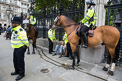 London, UK. 7 October, 2019. Metropolitan Police officers, including mounted police, arrest a climate activist from Extinction Rebellion outside the Houses of Parliament on the first day of International Rebellion protests to demand a government declaration of a climate and ecological emergency, a commitment to halting biodiversity loss and net zero carbon emissions by 2025 and for the government to create and be led by the decisions of a Citizens' Assembly on climate and ecological justice.