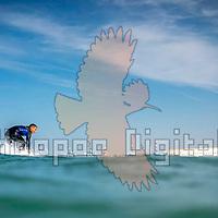 2020-11-22 Lido Beach, Ashdod