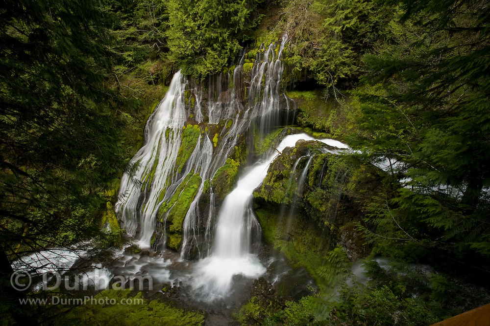 Upper Panther Creek Falls in the Wind River Experimental Forest, Oregon.