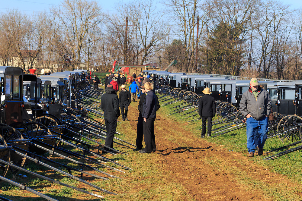 Gordonville, PA, USA / March 10, 2018: Amish buggies are one of the many things sold at the annual Lancaster County Mud Sale at the Gordonville Fire Company.
