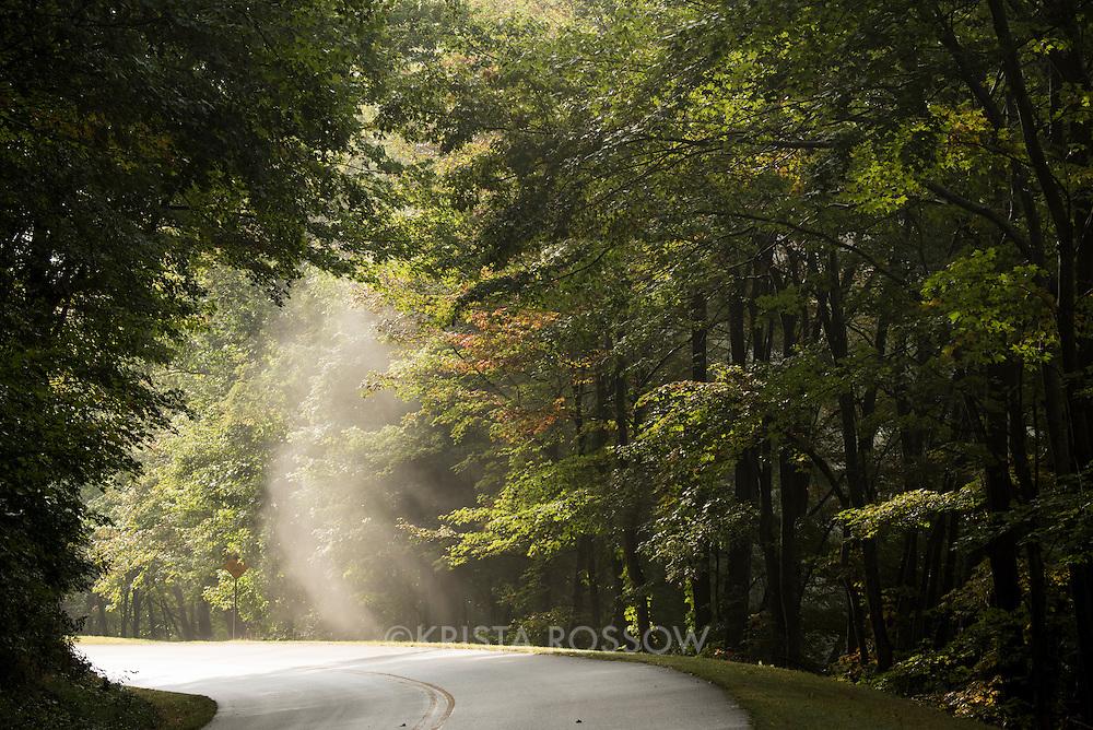 Misty morning road scene along the Blue Ridge Parkway near Mills River, North Carolina, southwest of Asheville.