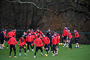 100114 Cardiff city FC training