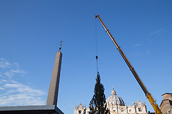 November 22, 2018 - Roma, RM, Italy - In Piazza San Pietro the Christmas tree was hoisted, a spruce from Pordenone and donated from the Friuli Venezia Giulia region. (Credit Image: © Matteo Nardone/Pacific Press via ZUMA Wire)