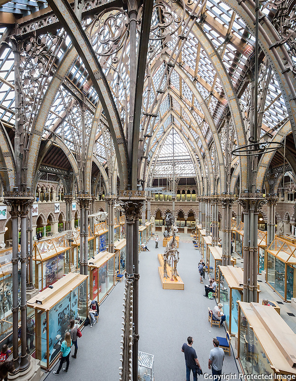 Interior of The Oxford University Museum of Natural History. The square court with a glass roof, supported by cast iron pillars, which divide the court into three aisles. Cloistered arcades run around the ground and first floor of the building, with stone columns each made from a different British stone.The building is designed by Thomas Newenham Deane and Benjamin Woodward in 1850 influenced by the writings of critic John Ruskin.
