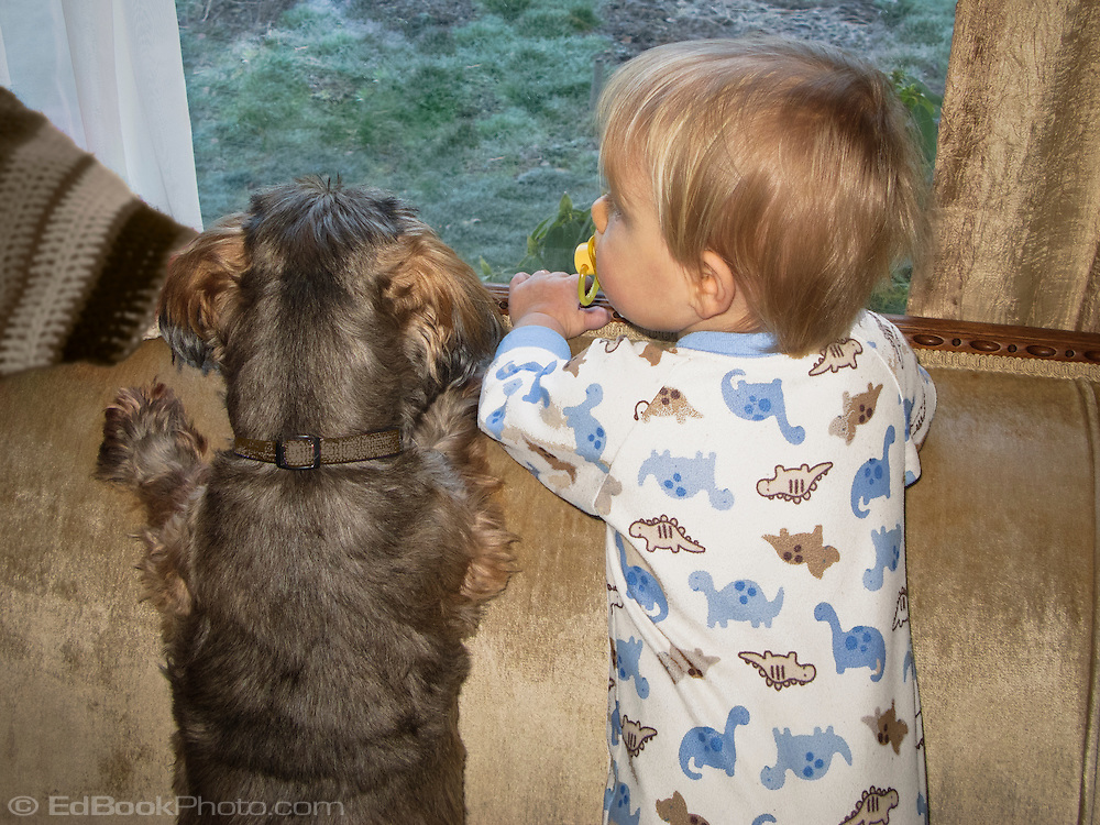 1-1/2 year old Talus and friend Hoodoo watch Daddy leave for work.