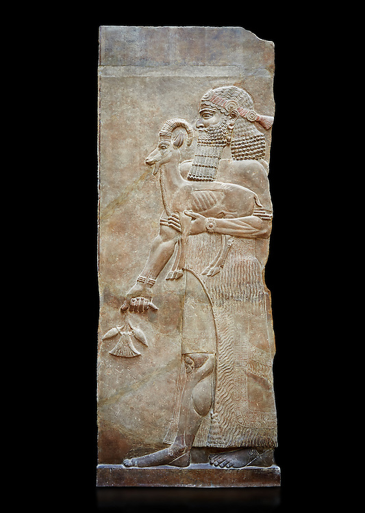 Stone relief sculptured panel of a man holding an Ibex and poppy seed pods. Facade N. Inv AO 19872 from Dur Sharrukin the palace of Assyrian king Sargon II at Khorsabad, 713-706 BC.  Louvre Museum Room 4 , Paris .<br /> <br /> If you prefer to buy from our ALAMY PHOTO LIBRARY  Collection visit : https://www.alamy.com/portfolio/paul-williams-funkystock/ancient-assyria-antiquities.html  Refine search by adding background colour, place, subject, museum etc into the LOWER SEARCH WITHIN GALLERY box to <br /> <br /> Visit our ANCIENT ASSYRIAN PHOTO COLLECTIONS for more photos to download or buy as wall art prints https://funkystock.photoshelter.com/gallery-collection/Ancient-Assyrian-Art-Artefacts-Antiquities-Historic-Sites-Pictures-Images-of/C0000cjRqQyJjLag