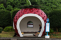 Japan is no stranger to imaginative art and design where even manholes can be done up in surprisingly artful and charming ways. These delicious looking fruity bus shelters made their way from the Osaka expo down to Konagai, Nagasaki Prefecture, where they have drawn curious visitors to the coastal town ever since.  Bus stops come in different shapes and sizes but in the town of Konagai in Nagasaki Prefecture, they come in different flavors too: watermelon, strawberry, cherry and orange.  Pick your favorite! These juicy bus stops would feel right at home in a theme park but stand in service, protecting waiting bus passengers from the elements.  As  you might expect, they have become local landmarks.  The creators of these gems were inspired by the pumpkin carriage in Cinderella.