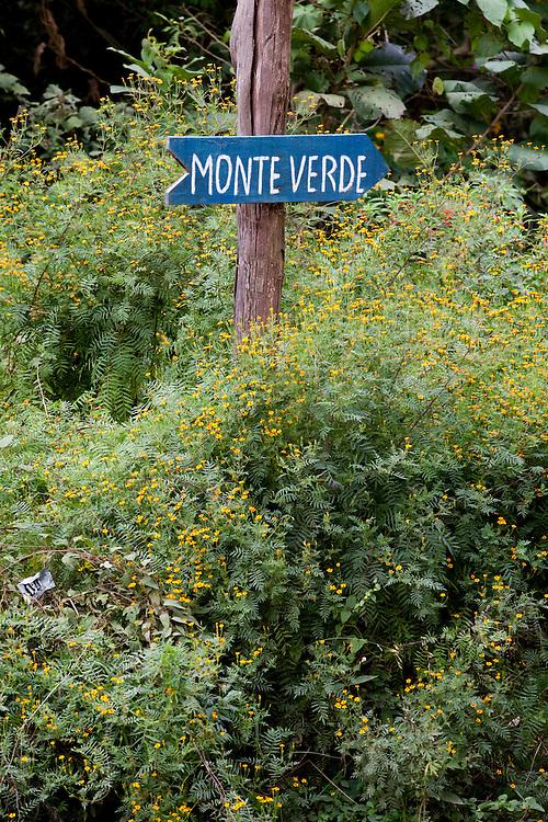 Goncalves_MG, Brasil...Placa indicando cidade de Monte Verde em Goncalves...The indicating sign for Monte Verde town in Goncalves...Foto: LEO DRUMOND / NITRO.....