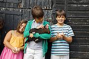 Charlotte, 6, Edward, 12 and Joseph, 12, in the chicken run at Hares Farm. CREDIT: Vanessa Berberian for The Wall Street Journal<br /> UKFARM-Hares Farm