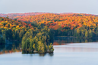 https://Duncan.co/small-island-and-fall-color-at-dawn