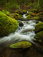 Moss covered rocks and cascade, Middlesex, Vermont