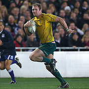 Wallaby captain Rocky Elsom scores a try for Australia during the New Zealand V Australia Tri-Nations, Bledisloe Cup match at Eden Park, Auckland. New Zealand. 6th August 2011. Photo Tim Clayton