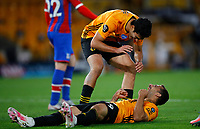 2019 / 2020 Premier League - Wolverhampton Wanderers vs Crystal Palace <br /> <br /> Jonny Otto of Wolverhampton Wanderers celebrates at Molyneux.<br /> <br /> Credit COLORSPORT/LYNNE CAMERON