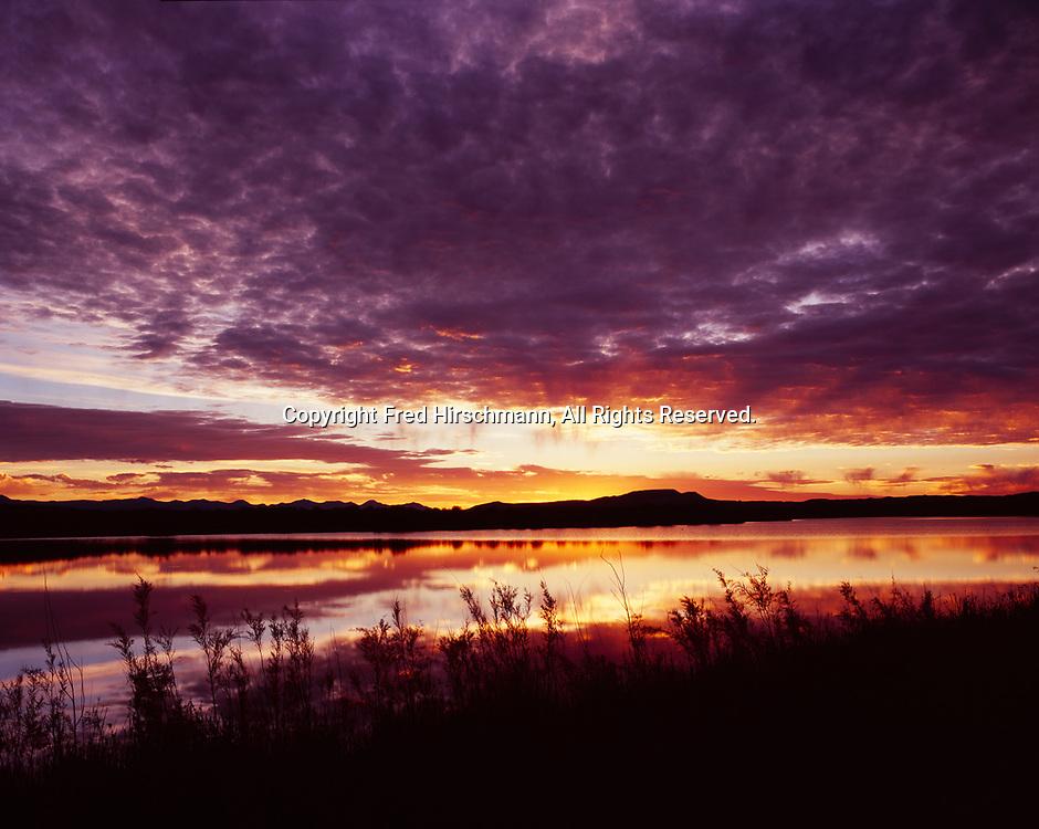 Shore of Desert Lake at sunrise, Desert Lake Waterfowl Management Area, Castle Valley, Utah.