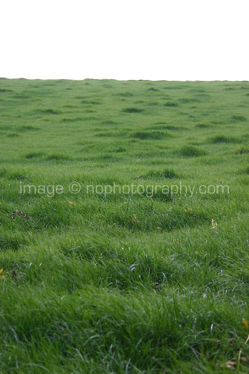 Green field, Ireland