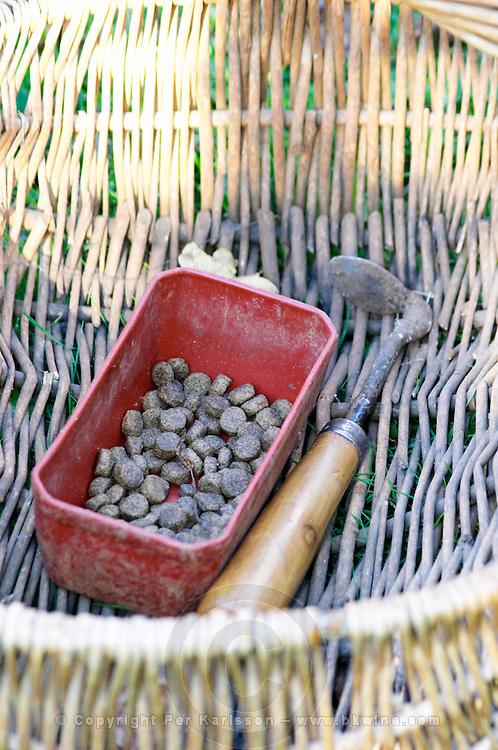 A wicker basket with dog candy, The dog is give a candy as a reward when it finds a truffle Truffiere de la Bergerie (Truffière) truffles farm Ste Foy de Longas Dordogne France