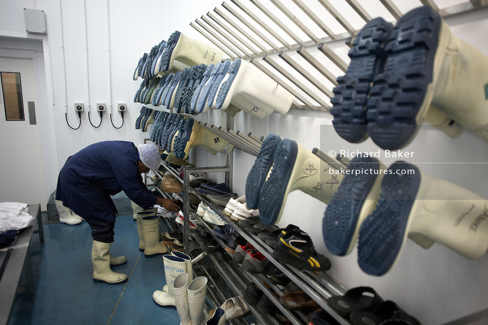 Pairs of insulated, anti-slip Dunlop Acifort Wellington boots await users a cold room of New England seafood importers