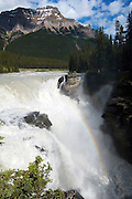 Athabassa Falls off the Icefield Highway, Rocky Mountains, British Colombia, Banff National Park, Canada, North America.