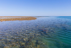 Shallow waters around the reef off Adele Island on the Kimberley coast.