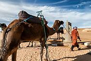 Nomad with camels (dromedary) at a well, at Erg Chaggaga, Mhamid, Sahara desert, Morocco.