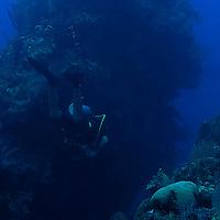 Big Tunnels, Grand Cayman