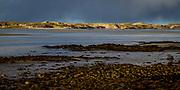 Summer Evening at Killinallan, Isle of Islay