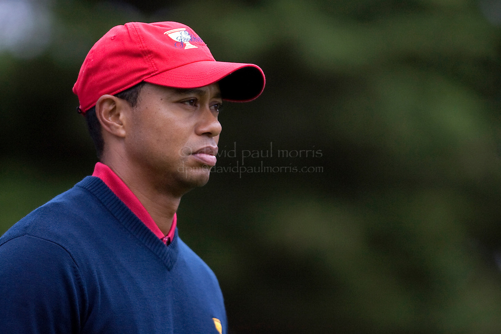 Tiger Woods walks down the 4th fairway during final round action of the Presidents Cup at Harding Park Golf Course October 11, 2009 in San Francisco, California.  Photograph by David Paul Morris