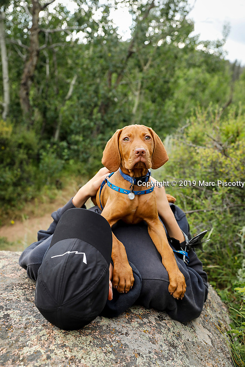SHOT 7/21/19 6:12:12 PM - Risto, an eleven week old Vizsla, lies on Andrius Henning as he takes part in his first camping trip at the Vedauwoo Recreation Area near Buford, Wyo. The Vizsla is a versatile, red-coated gundog built for long days in the field. For centuries, these rugged but elegant athletes have been the pride of Hungarian sportsmen and their popularity in America increases with each passing year. The Vizsla is a natural hunter endowed with an excellent nose and an outstanding trainability. It was bred to work in fields, forests, or bodies of water. Although they are lively, gentle-mannered, demonstrably affectionate and sensitive, they are also fearless and possess a well-developed protective instinct. (Photo by Marc Piscotty / © 2019)