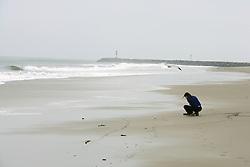 Sandi Matsumoto On Survey Of Orond Beach