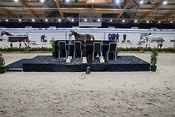 Presentatie aangewezen hengsten<br /> KWPN Hengstenkeuring 2021<br /> © Hippo Foto - Dirk Caremans<br />  02/02/2021