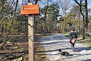Nederland, Malden, 28-3-2020 In het natuurgebied Hooge Hoenderberg bij Nijmegen wandelen mensen en laten hun hond uit. Door de opgelegde social distancing vanwege het coronavirus houdt iedereen afstand van elkaar. Het is niet erg druk en dat is dus niet moeilijk . Foto: Flip Franssen